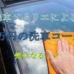 洗車ソムリエの10万円の洗車を調査!