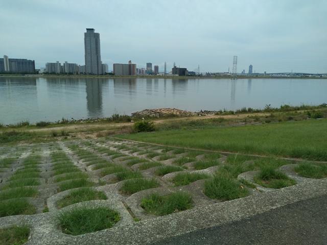 淀川を臨む